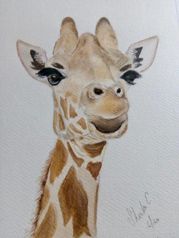 Giraffe-sheilaC.JPG