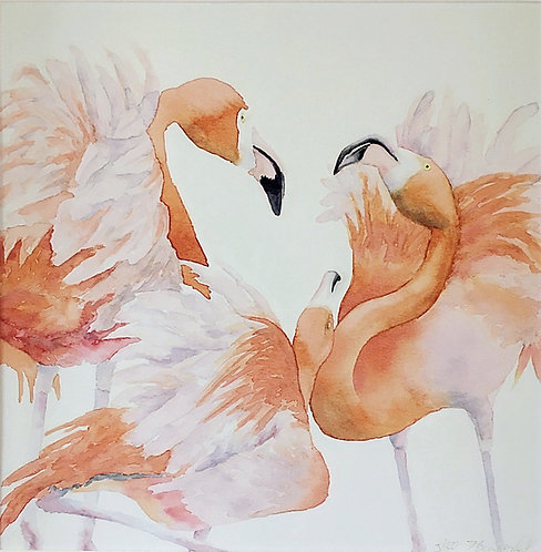 Flamingo Flurry (P)