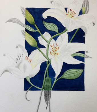 Lilies-LibbyH.jpg