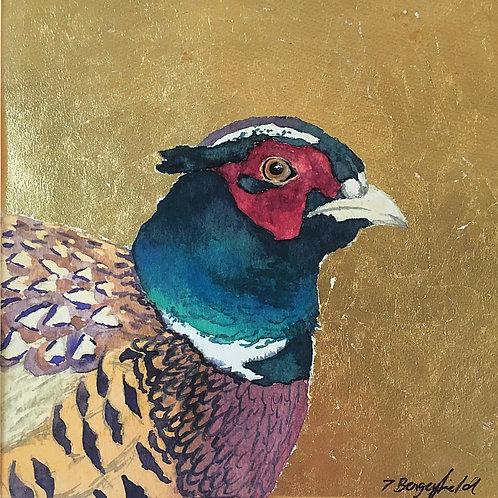 Finley Pheasant (P)