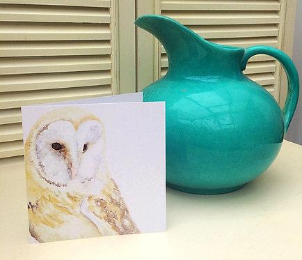 Betsy Barn Owl