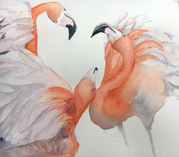 Flamingos-ElfiD.jpg