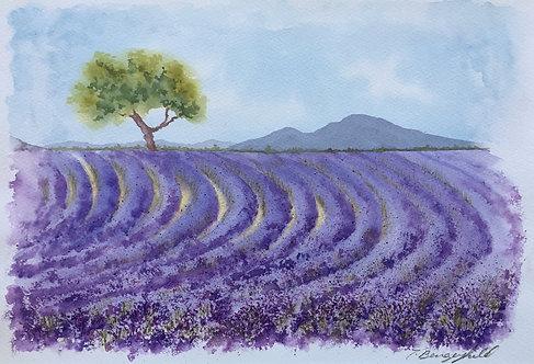Landscape in Lavender (O)