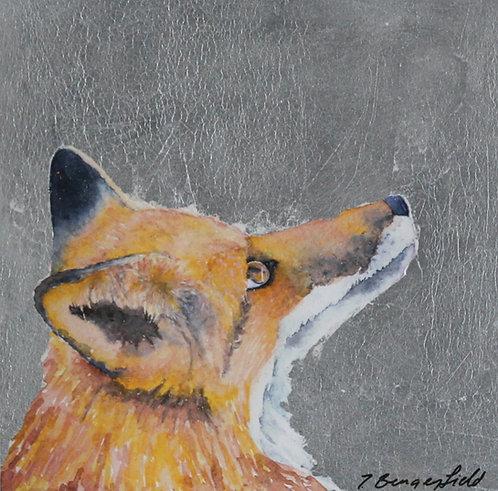 Ferdy Fox (P)