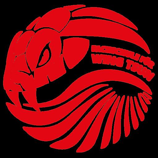 Kampfkunst und Selbstverteidigung Fachschule für Wing Tsun Würzburg - Logo Copyright by Adrian Schatz
