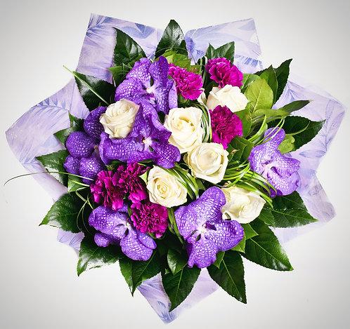 Lively Violets
