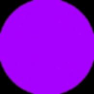Digicon pattern - circle.png