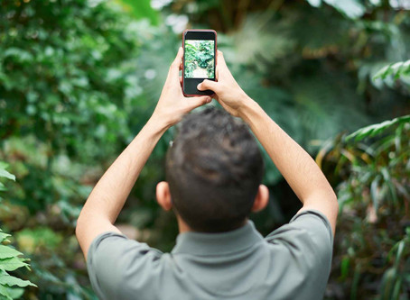 How to Use Your Phone with Intention