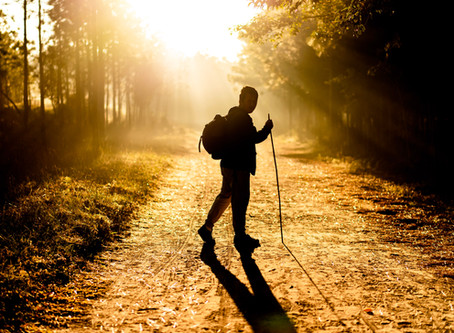 Walking Might Be the Best Exercise There Is