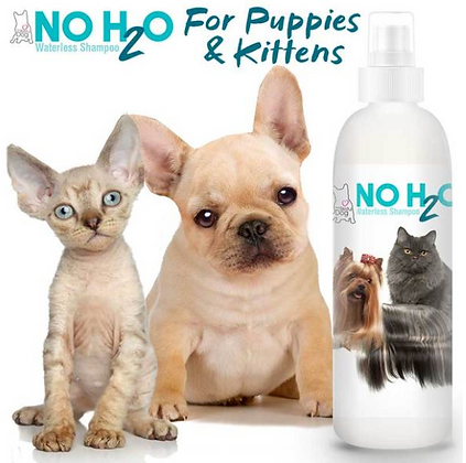 NO H20 Spray Pet Shampoo