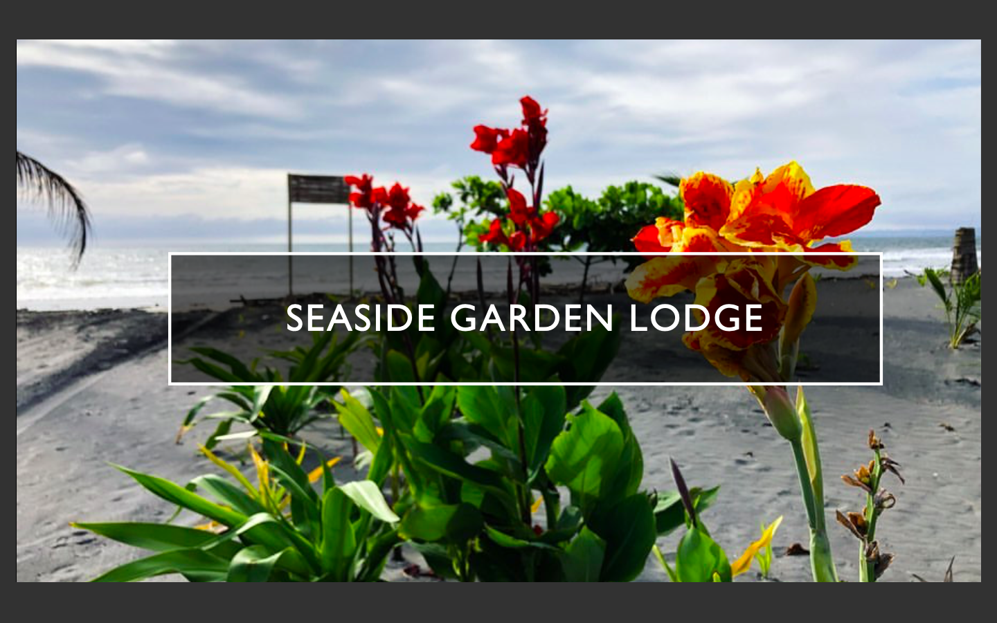 9. SEASIDE INTRO GARDEN BEACH