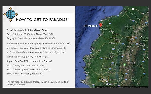 5. HOW TO GET TO PARADISE.png