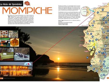 Relax total en la Bahia de Mompiche