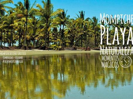 MOMPICHE Momentos mágicos: atardeceres, naturaleza & surf.