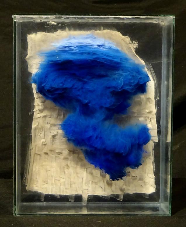 fireleg blue