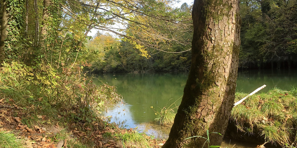Auszeit am Fluss