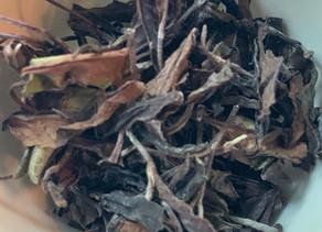 365 Teas Challenge > Day 251 - White tea from Zhangjiajie 2019