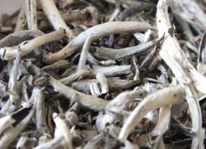 365 Teas Challenge > Day 196 -  Jinggu White Tea 2020