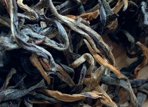 365 Challenge > Day 181 - Royal Assam SFTGFOP Black Tea
