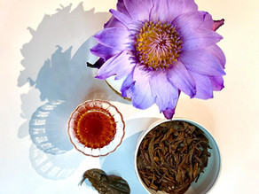 365 Teas Challenge > Day 273 - Gushu Shai Hong Cha