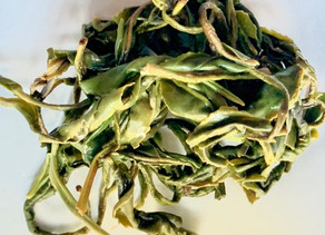 365 Challenge > Day 138 - Fresh Green Tea from Rize 2020