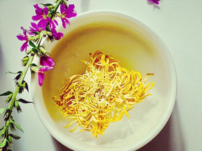 365 Teas Challenge > Day 201 -  Chrysanthemum Blossom Tea