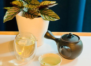 365 Teas Challenge > Day 253 - Phoenix Green Tea 2020