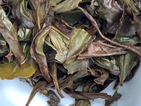 365 Teas Challenge > Day 244 -  Wuyi Yancha Yellow Rose (Huang Mei Gui)