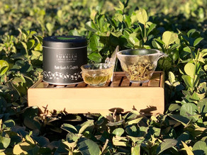 365 Teas Challenge > Day 306 - Not Just A Green Tea