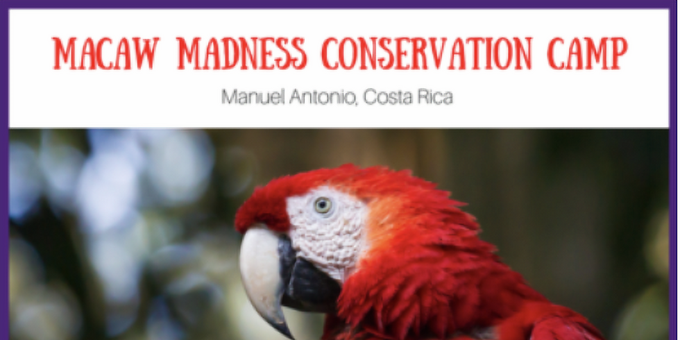 Macaw Madness Conservation Camp