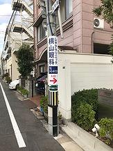 IMG_1379.jpg