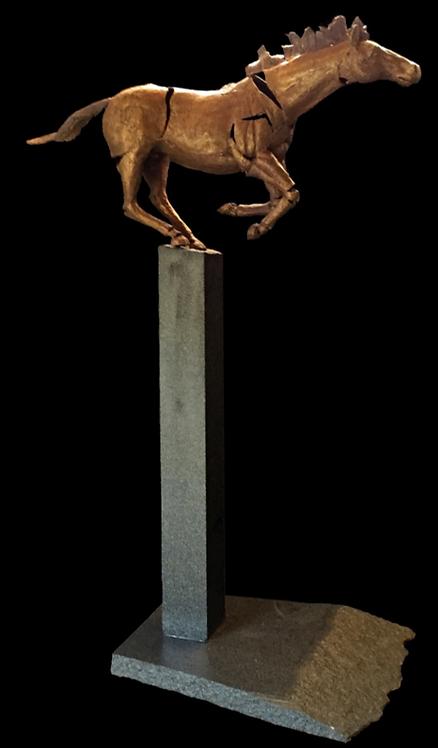 """""""Equus XIII"""""""