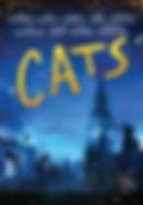 DVD Cats.jpg