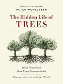 The Hidden Life of Trees by Peter Wohlle