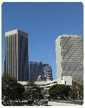 Downtown_Los_Angeles-170x216.jpg