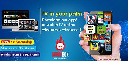 GurooBox - TV in your palm.jpg