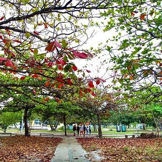 UFS_foto_Flávio.jpg