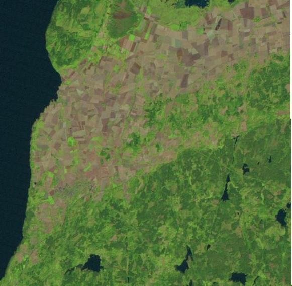 5mc43 gröna fält