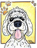 amayfielddog_byvanessajthompson.jpg