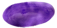 Purple watercolor blob as a button on the website