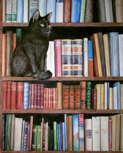 BookshelfCat.jpg