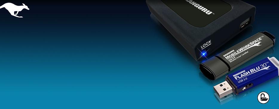 Kanguru-USB-drives.jpg