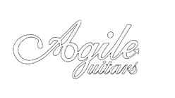 agile logo invert_edited.png