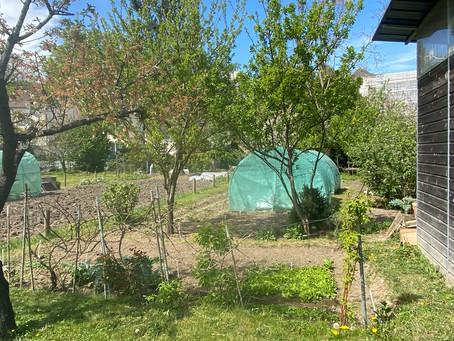 LES AIDES POUR L'ENVIRONNEMENT : L'appel à projet               «Jardins partagés»