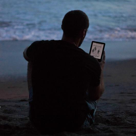 Am Strand Studienskript lesen