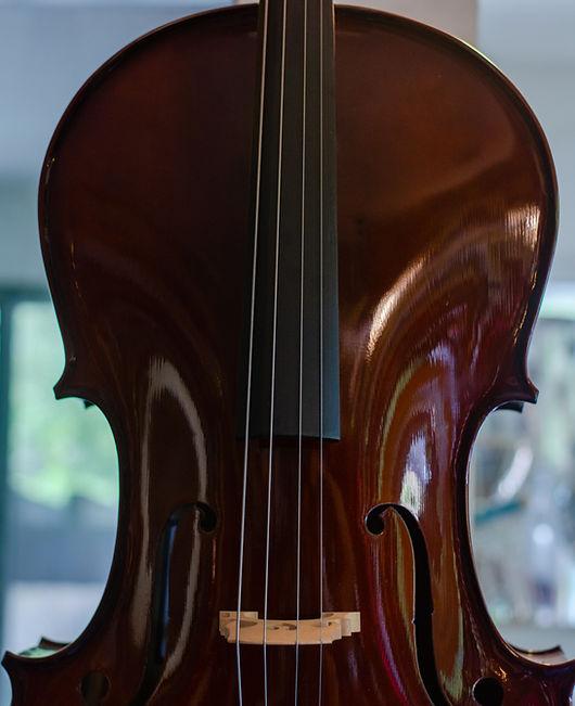 Alma Music Cello
