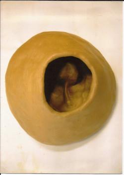 35.20 Embrionária (25hx25x25 cm)