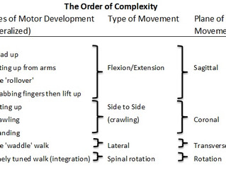 How Understanding the Stages of Motor Development Can Improve Your Bodywork