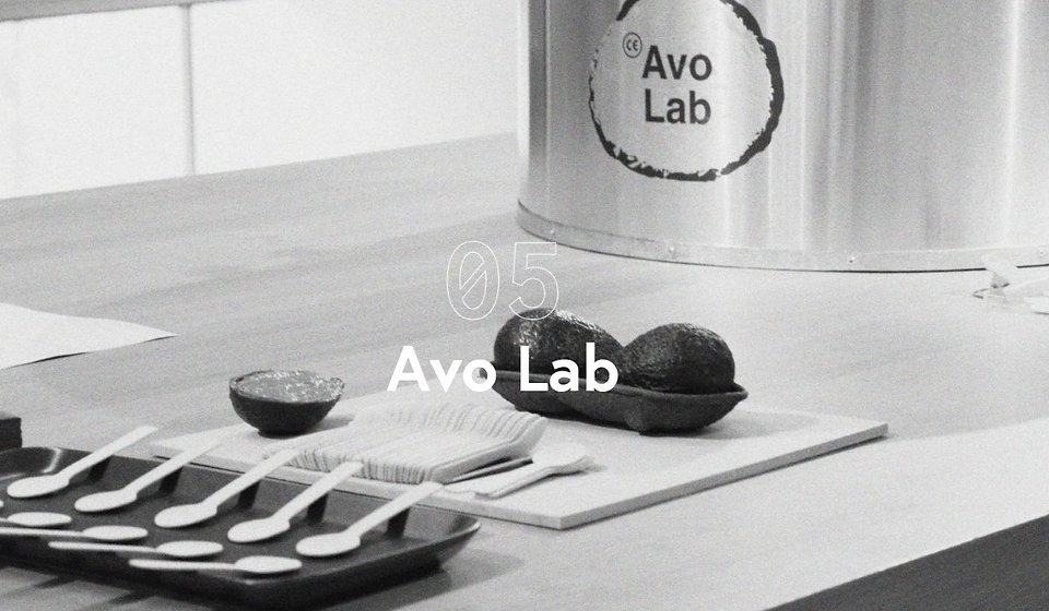 Avo Lab