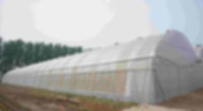 EnviroDome ® ventilation PATENTE